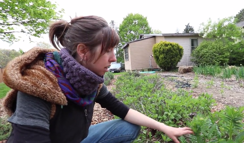 Grow Your Own Farmacy (In Your Yard)