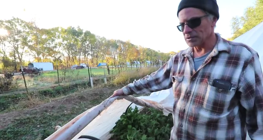 LOW TUNNELS : Easily Extend Your Growing Season