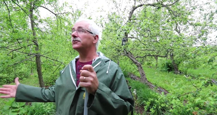Intro to Permaculture #1: What Permaculture Can Do For You
