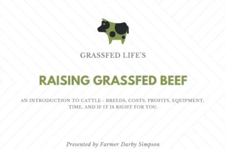 PART 7) Raising Grassfed Beef 101 | Feat. Darby Simpson