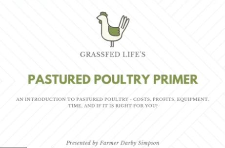 PART 2) Pastured Poultry Primer – An Introduction to Pastured Poultry | Feat. Darby Simpson