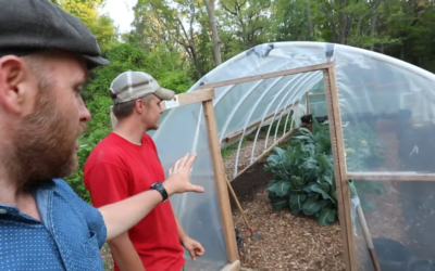DIY Greenhouse | Feat. Honey Tree Farm